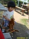Photo_230